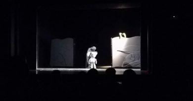elefantelul curios teatrul calutul de mare constanta