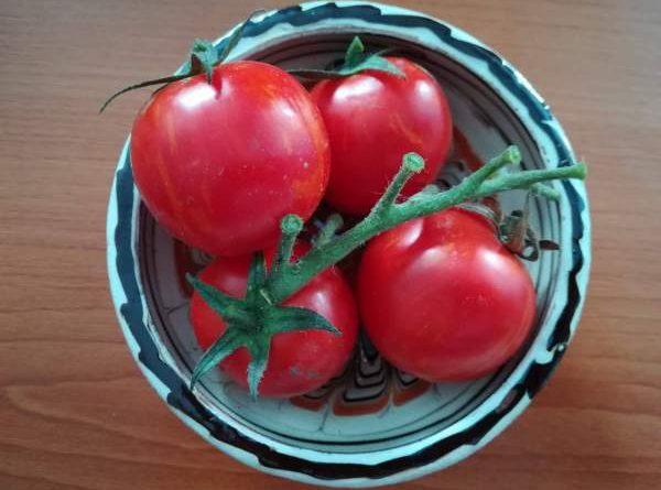 rosii tomate vas traditional