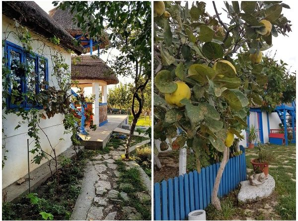 casa bulgareasca visina suvenir din Dobrogea