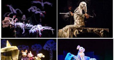 spectacole teatrul calutul de mare
