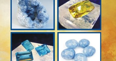 mineral expo 2019