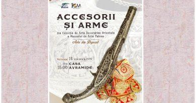 accesorii si arme expozitie casa avramide tulcea
