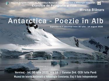 antarctica poezie in alb miruna blanaru afis