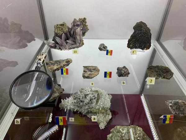 expozitie minerala constanta